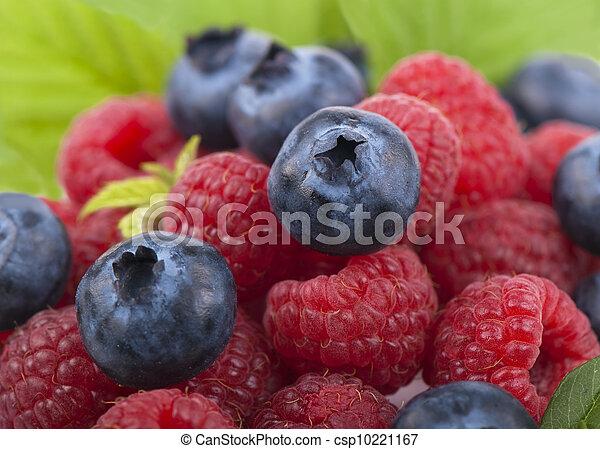 Raspberry with blueberry - csp10221167