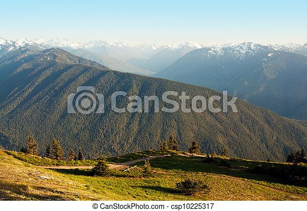 Hurricane Ridge Mountain Landscape - csp10225317