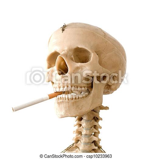 Smoking kills - csp10233963
