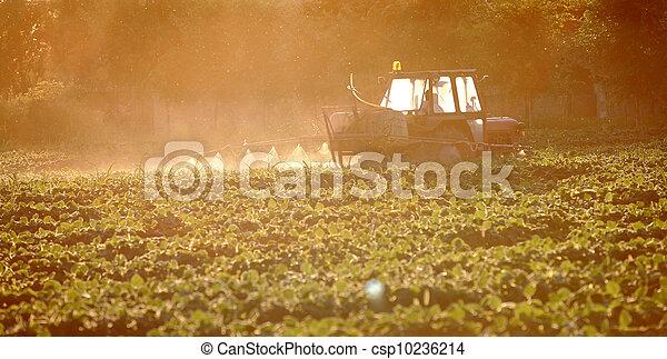 Agriculture - csp10236214