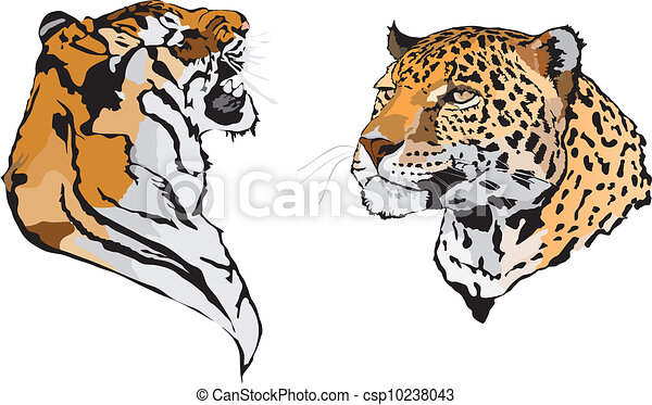Stock Illustration - leopard - csp10238043