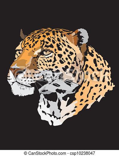 Stock Illustration - leopard - csp10238047