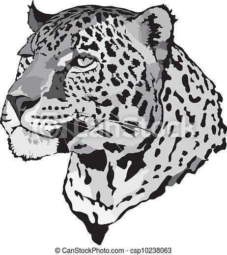Stock Illustration - leopard - csp10238063