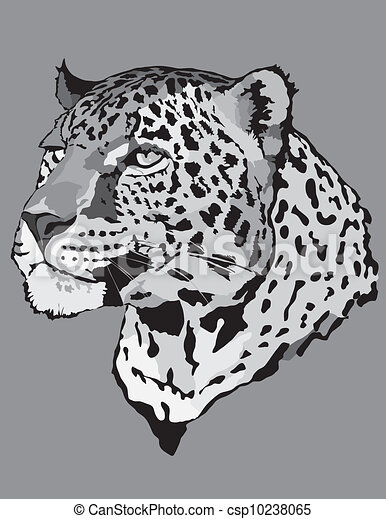 Stock Illustration - leopard - csp10238065