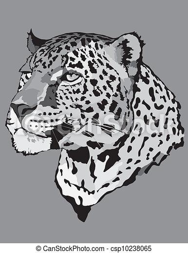Stock Illustration - leopard - csp10238065