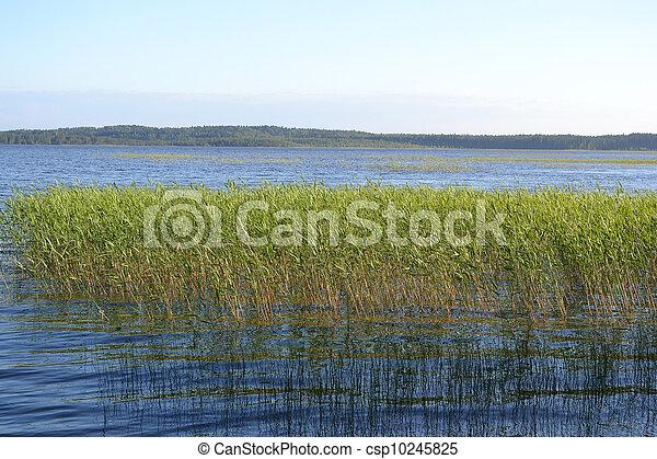 Kavgolovskoe lake - csp10245825