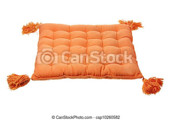 Cushion  - csp10260582
