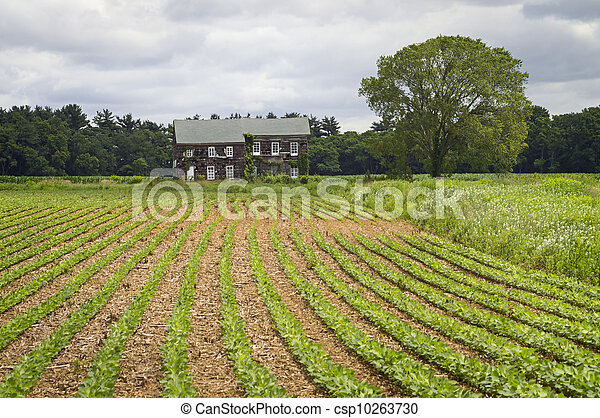 Historic Home - csp10263730