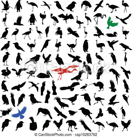 Hundred silhouettes of birds  - csp10263762