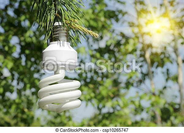 Energy saving light bulb on a branch of pine - csp10265747