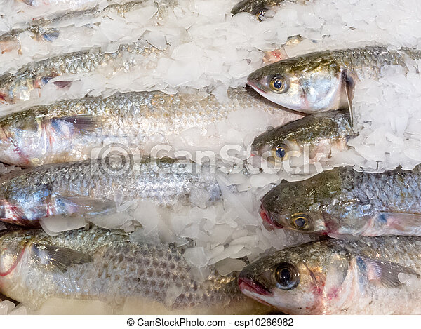 Offering of fresh fish chilled with crushed ice - csp10266982
