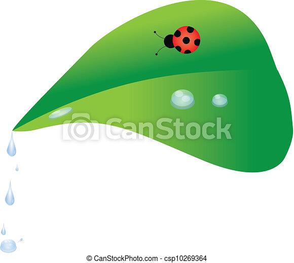 Leaf - csp10269364