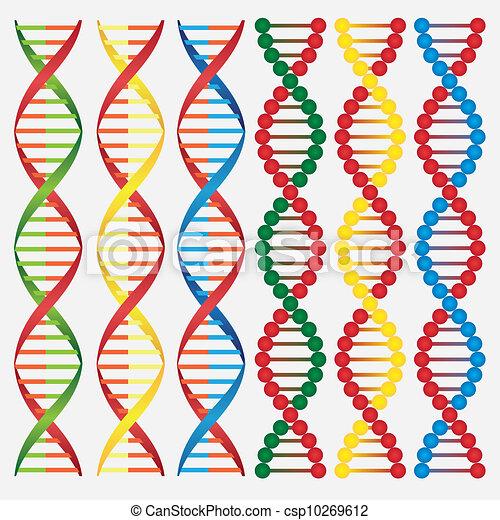 Molecules of DNA. - csp10269612