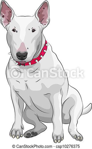 Vectors Illustration Of Vector Cartoon Bull Terrier Dog
