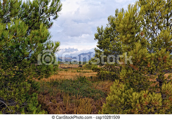 Suumer landscape with rural road in Spain. - csp10281509