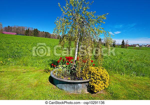 Flowerbed - csp10291136