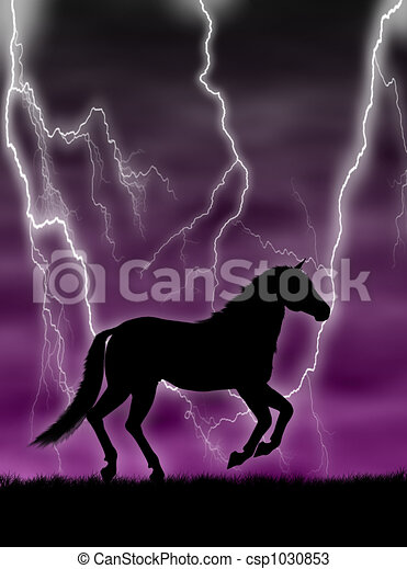 Horse in the storm - csp1030853