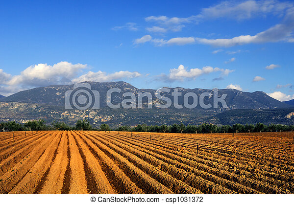 landwirtschaft - csp1031372