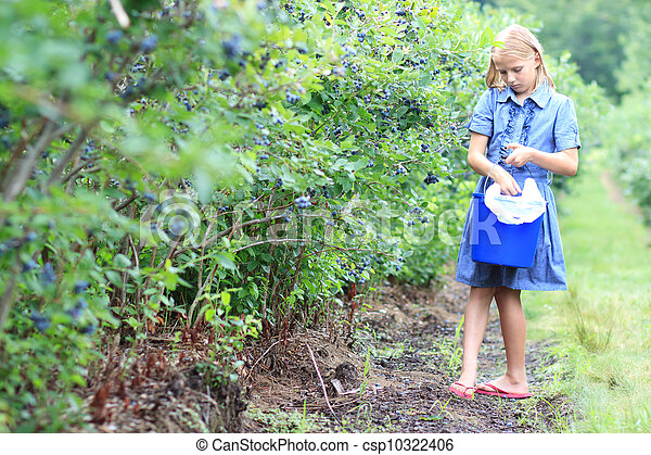 Blonde Girl Picking Blueberries - csp10322406