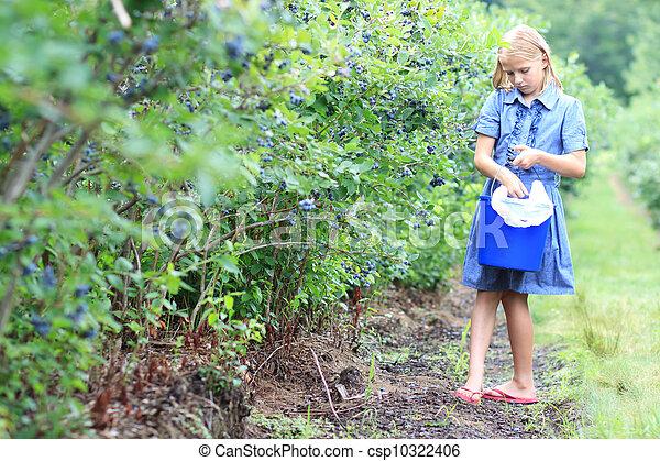 Blonde Girl Picking Blueberries - csp10322406