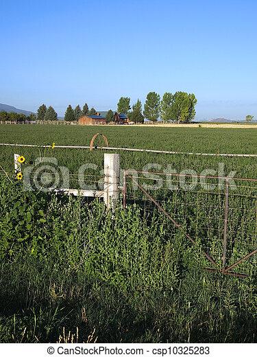 Farm Gate - csp10325283