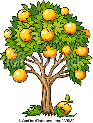 Clipart Vector of fruit tree isolated - fruit tree vector ...
