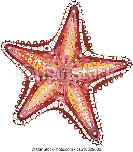Clipart of Abstract Starfish - Illustration of abstract starfish ...