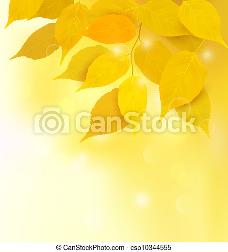 Autumn background with yellow leave - csp10344555