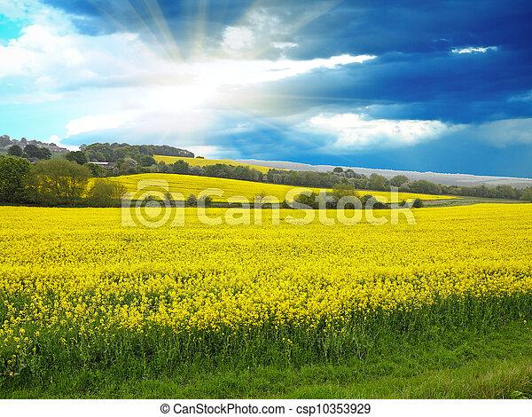 Spring rural landscape - csp10353929