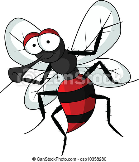 anopheles mosquito drawing