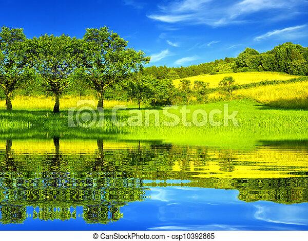 hermoso, ambiente, verde - csp10392865