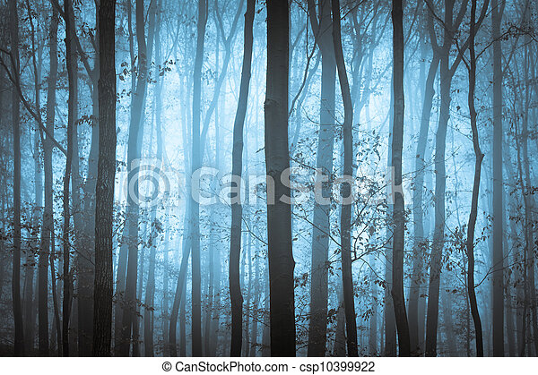 Dark blue spooky forrest with trees in fog - csp10399922