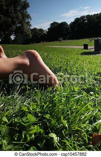 relaxing in the park - csp10457882