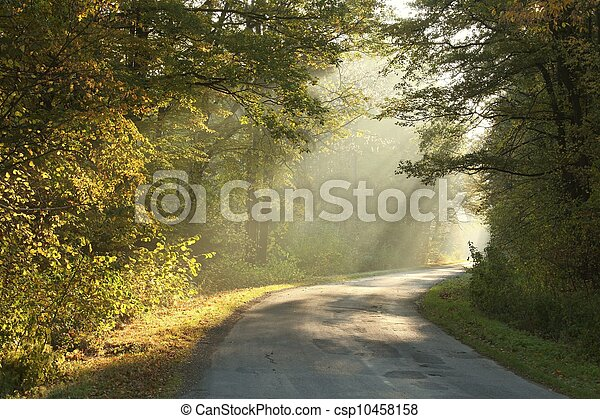 Rural road through the autumn woods - csp10458158