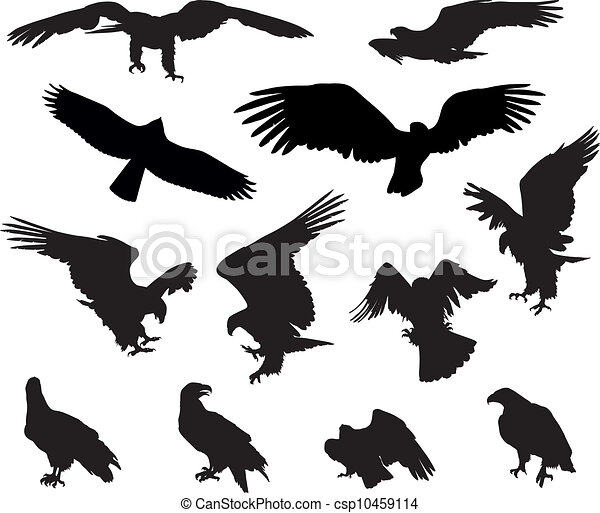 stock illustration, royalty free illustrations, stock clip art icon ...: www.canstockphoto.com/eagles-10459114.html