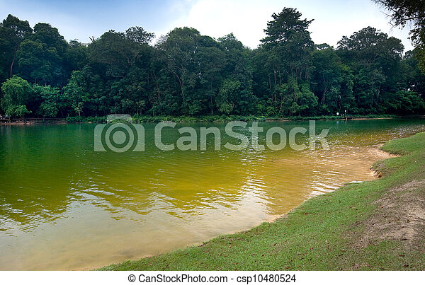 Part of reservoir in MacRitchie park, Singapore - csp10480524