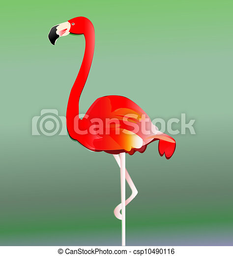 Flamingo bird vector eps10 - csp10490116