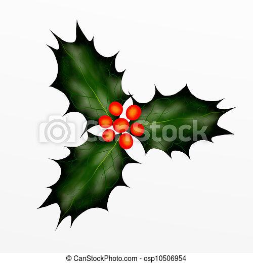 Christmas Holly Twig for Christmas - csp10506954