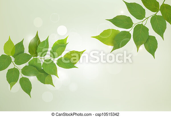 Nature background with green leaves - csp10515342
