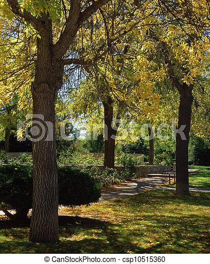Santa Fe City Parks - csp10515360