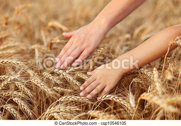 Praise mother nature feeding us - csp10546105