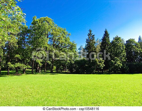 Photographies de bleu pelouse ciel baign lumi re for Pelouse tarif