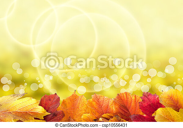 Beautiful autumn background with viburnum leaves - csp10556431