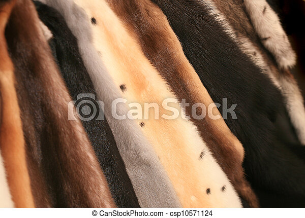 fur of mink of different colours