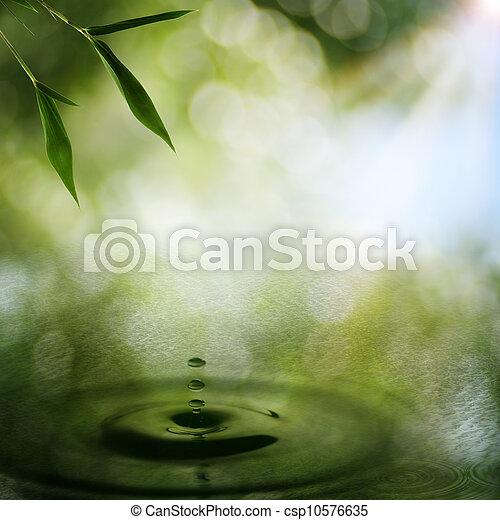 orientalische , abstrakt, hintergruende, bambus, laub - csp10576635