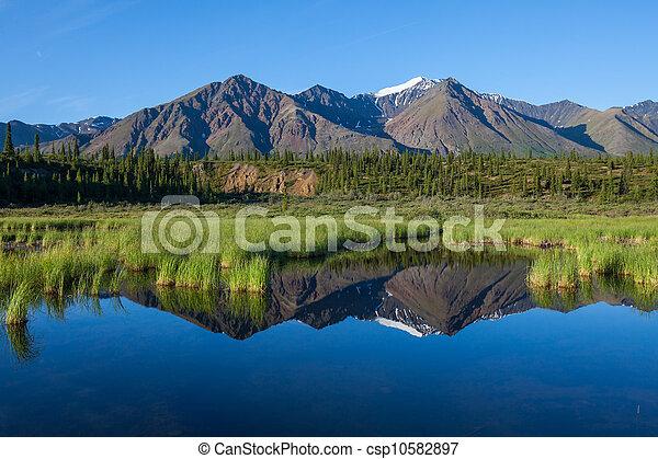 See,  Alaska - csp10582897