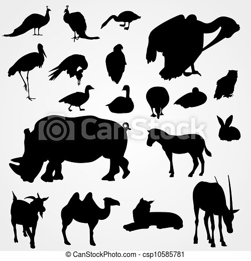 Set of silhouettes animals on zoo - csp10585781