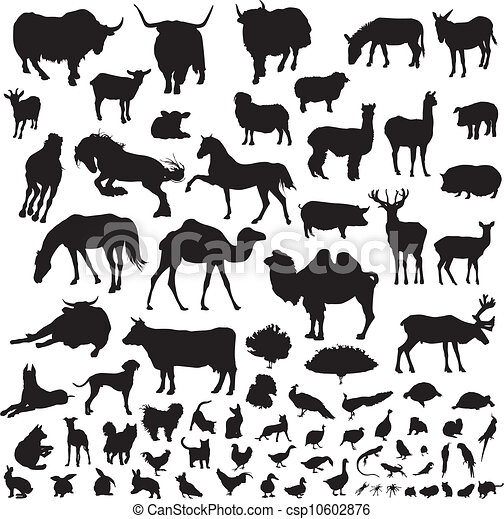 silhouettes of animals - csp10602876