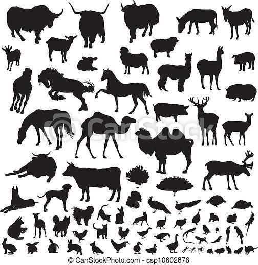silhouettes of animals - csp10602876