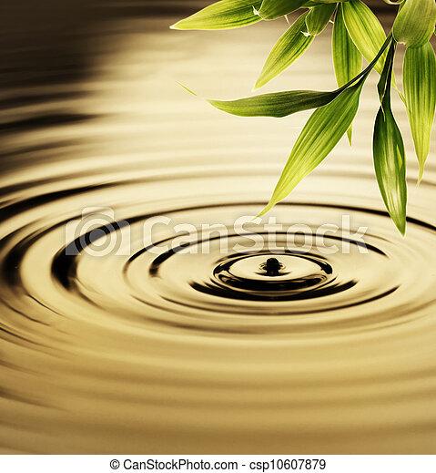 水, 新鮮, 竹子, 在上方, 離開 - csp10607879